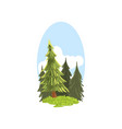 detailed hand drawn landscape scene with evergreen vector image vector image