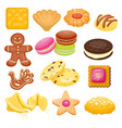 different cookie cake isolated vector image vector image