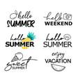hello summer hand drawn lettering set summer vector image