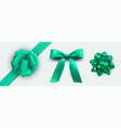 holiday green ribbon package set packaging design vector image