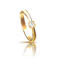 realistic golden ring vector image vector image