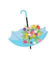 spring flowers in umbrella vector image vector image