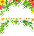 Tropical Flowers Border Set vector image vector image