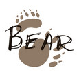 bear paw print design vector image