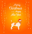 funny dog merry christmas vector image