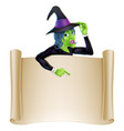 halloween witch scroll vector image vector image
