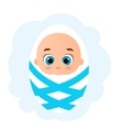 Newborn little baby boy Cute Cartoon Baby Boy vector image