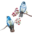 Nice watercolor birds vector image vector image