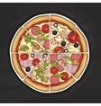 pizza color picture sticker vector image