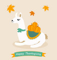 poster for thanksgiving day with lama and pumpkin vector image vector image