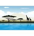 Africa landscape vector image vector image