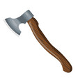 ax with a wooden handle color a one axe vector image vector image