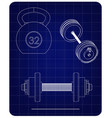 barbell and dumbbell on a blue vector image