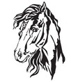 decorative portrait of horse 1 vector image