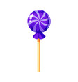 lollipop colorful sweet round candies on stick in vector image