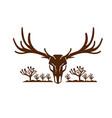 mule deer skull joshua tree icon vector image vector image