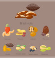 piles of different nuts pistachio almond peanut vector image vector image