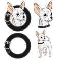 set color with a chihuahua vector image vector image