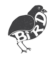 Bird with the inscription on the body vector image