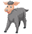 gray sheep with happy face vector image vector image
