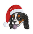happy santa dog panting isolated on white vector image vector image