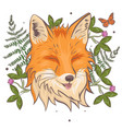 head a fox surrounded clover and fern vector image vector image