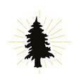 retro fir silhouette logo vector image