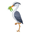 the heron in a beak holds a frog vector image