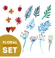 set floral watercolor vector image