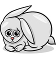 baby rabbit bunny cartoon vector image vector image