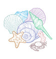 background with seashells vector image vector image