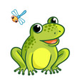 frog is sitting on a white background vector image