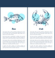 hand drawn decorative sea bass and crab icons vector image