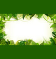 jungle tropical landscape wide background vector image
