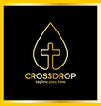 cross drop logo - christ blood vector image vector image