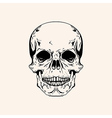 Hand drawn sketch scull tattoo line art Vintage vector image vector image