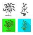 isolated object of greenhouse and plant sign set vector image