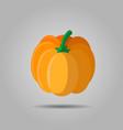 orange pumpkin autumn halloween pumpkin vector image