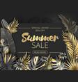 sale summer tropical leaves frame on striped vector image