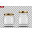 Set of Glass Jars for canning vector image vector image