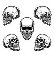 skulls in different position vector image vector image