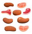 steak icon set cartoon style vector image