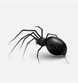 stock realistic black spider vector image vector image