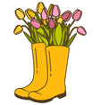with flower pot and tulip vector image vector image