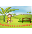 a playful monkey vector image