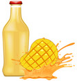 fresh mango with juice vector image