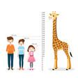 man woman girl measuring height with giraffe vector image