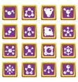 molecule icons set purple vector image vector image