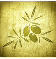 Olives Grunge Background vector image vector image