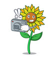 photographer sunflower mascot cartoon style vector image